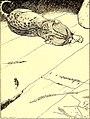 Old-time stories; (1921) (14578128758).jpg