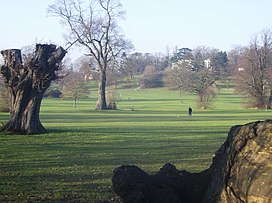Old trees in Prospect Park - geograph.org.uk - 648054.jpg
