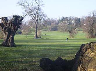 Prospect Park, Reading - Image: Old trees in Prospect Park geograph.org.uk 648054