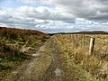 On a track near Collin Hags - geograph.org.uk - 734041.jpg