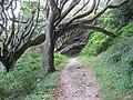 On the footpath to Stoke. - panoramio.jpg