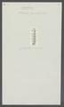 Oniscus gracilis - - Print - Iconographia Zoologica - Special Collections University of Amsterdam - UBAINV0274 098 06 0011.tif