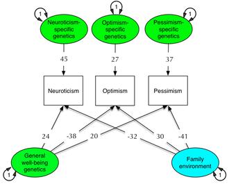 Optimism - Image: Optimistic Personality