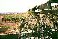 A wine farm on the Orange River