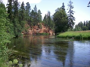 Gatchinsky District - The Oredezh River close to the settlement of Siversky
