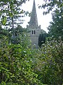 Overgrown churchyard - geograph.org.uk - 1011921.jpg