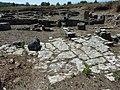 P1080405 Ruinas Conimbriga (Condeixa-a-Nova).jpg