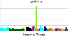PBB GE BMP2K 214716 at tn.png