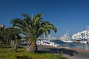 Palm in the harbour at Almerimar (13868632513).jpg