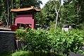 Pandasia Ouwehands Dierenpark 2017 2.jpg
