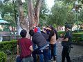 Paparazzis de ardilla en Zócalo de Tlaxcala.jpg