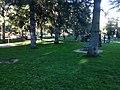 Parco Monte Ortobene 3.jpg
