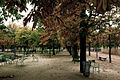 Paris Tuileries Empty.jpg