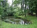 Parkteich 4 - Englischer Garten Meiningen - CC BY-SA 4.0 - Ludwig, Silvio.jpg