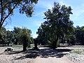 Parque del rio11.jpg