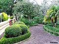 Paseo por un jardin - panoramio.jpg