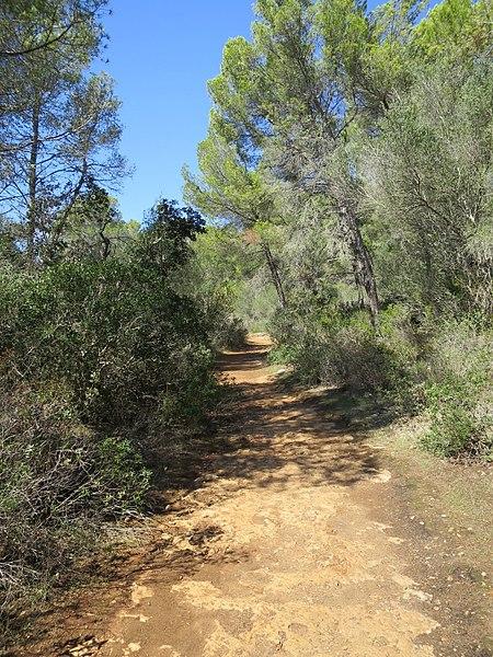 File:Path to Cala Trebaluger (30097417466).jpg