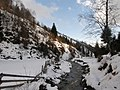 Pe valea Rausorului - panoramio.jpg