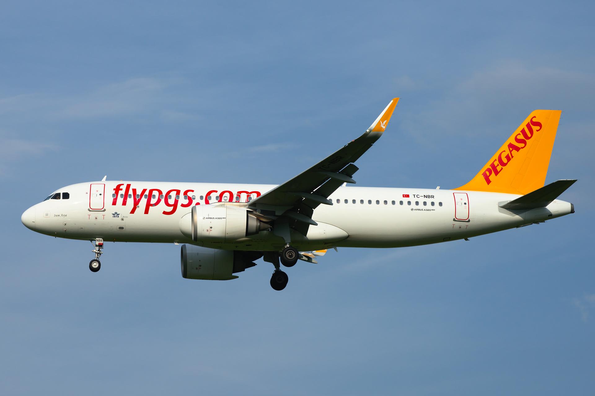 Europe's biggest airlines: Pegasus