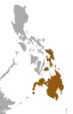 Philippine Flying Lemur area.png