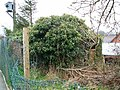 Pillbox at Aylsham Railway Station - geograph.org.uk - 1210600.jpg