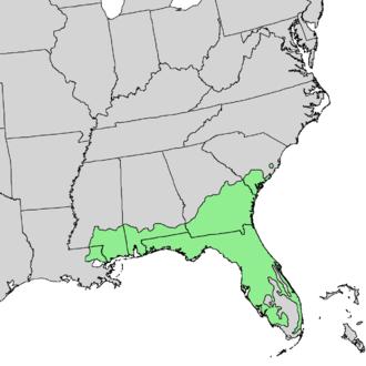 Pinus elliottii - Image: Pinus elliottii range map