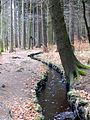 Pobershau Grüner Graben 2.jpg