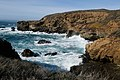 Point Lobos State Natural Reserve 1 18 19 (46112301074).jpg
