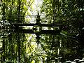 Ponte localizada no Bosque Rodrigues Alves.JPG
