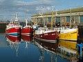 Portavogie Harbour - geograph.org.uk - 1499365.jpg