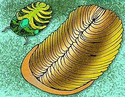 Hvad er den mest præcise form for dating fossiler