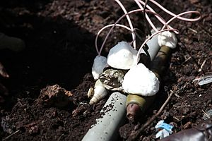 Plastic explosive - Disposal of munitions with plastic explosives