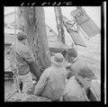 Provincetown, Massachusetts. Fishermen aboard the Portuguese drag trawler, Francis and Marion, sending a net LCCN2017830661.tif