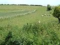 Provost Farm, Hampshire - geograph.org.uk - 187134.jpg