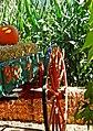 Punkin Wagon 10-14a (15515239031).jpg