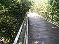 Putrajaya Botanical Garden in Malaysia 21.jpg