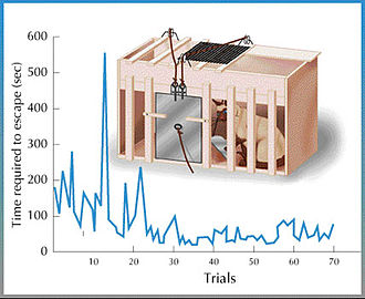 Law of effect - Thorndike's Puzzle-Box. The graph demonstrates the general decreasing trend of the cat's response times with each successive trial