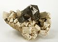 Quartz-Microcline-Albite-261455.jpg