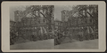 Queensborough Bridge in City Hall Park, New York, Spring 1916, from Robert N. Dennis collection of stereoscopic views.png