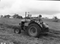 Queensland State Archives 1755 Fodder crops and conservation South East Queensland March 1955.png