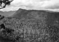 Queensland State Archives 432 Looking from Western Cliff towards Castle Crag and Lost World Lamington National Park September 1933.png