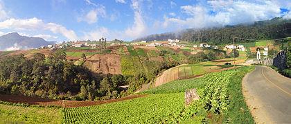 Quetzaltenango farm highlands 2009
