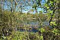 Réserve naturelle régionale du bassin de la Bièvre le 18 avril 2016 - 10.jpg