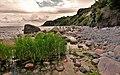 Rügen - Kap Arcona (28930900152).jpg
