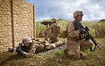 ROK Marines Participate in Island Viper 140529-M-QH615-099.jpg