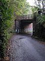 Railway bridge near Dailly - geograph.org.uk - 334590.jpg