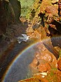 Rainbow Hatchery (6597694951).jpg
