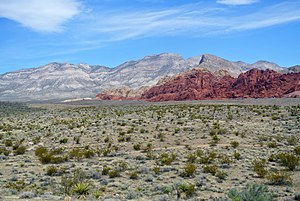 Red Rock Canyon National Conservation Area view 031513.JPG