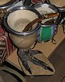 Rhea pennata pennata (11).JPG