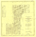 Rhyolite.nv.usa.townsiteplat.1908.png